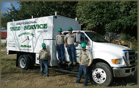 Woodsman Tree Service Team