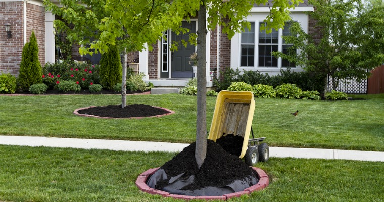 How to Prevent Grass and Weeds From Growing Through Mulch