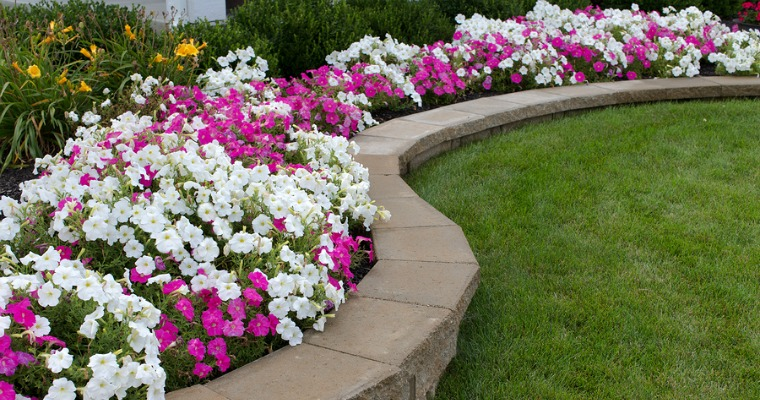 How To Prevent Soil Erosion In Your Yard