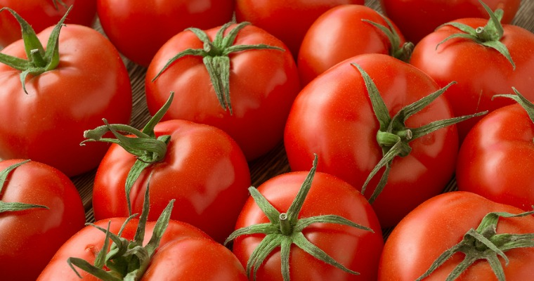 Tips on Growing Tomatoes In Your Garden