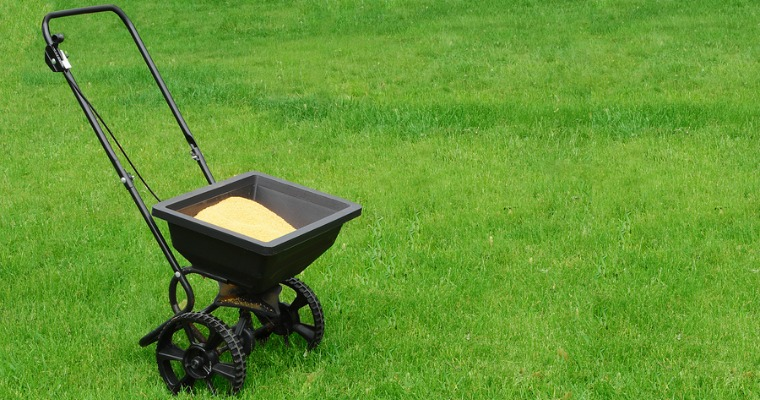 5 Fertilizing Tips to Protect Against Lawn Burn