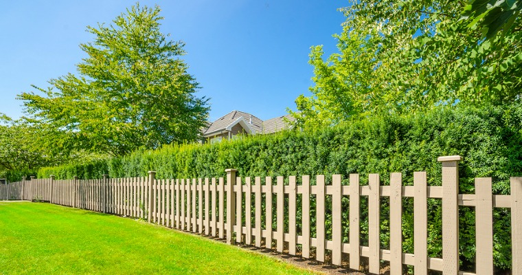 Improve You Home's Curb Appeal With a Privacy Hedge