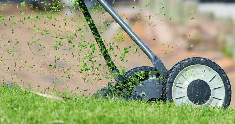 5 Things to Do With Grass Clippings