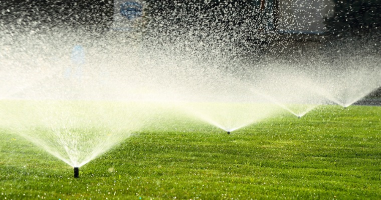 How to Keep Your Lawn from Drying Out