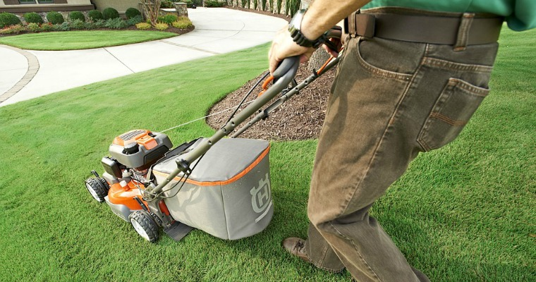 What To Do With Your Grass Clippings