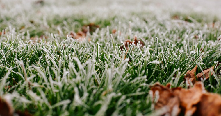 How to Winterize Your Lawn