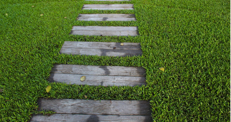 Natural Grass vs Synthetic Turf: Which Is Best?
