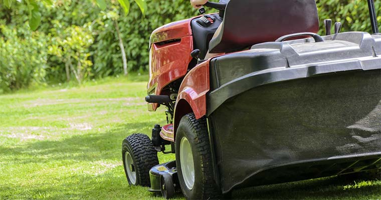 How to Prevent Creeping Bentgrass From Taking Over Your Lawn
