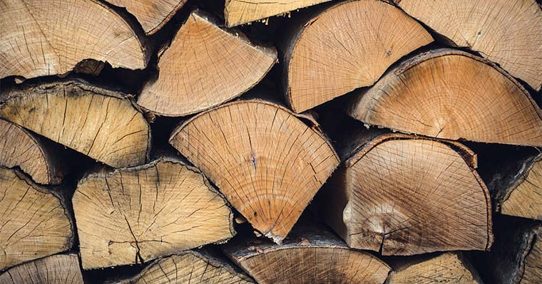 5 Tips on How to Harvest Firewood From a Fallen Tree